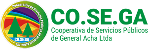 Logo COSEGA